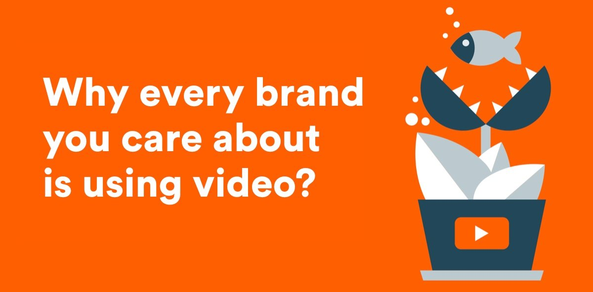 Infographic video trends